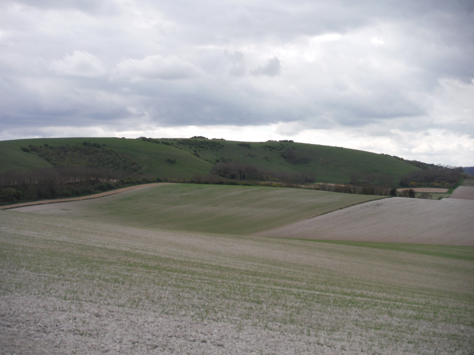 South Downs west of Week Lane SWC Walk 272 Uckfield to Lewes