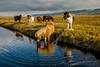 ISLANDIA-VIAJE-FOTOGRAFICO-AUTUMN-2-14
