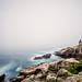 Acadia Coastline by dicksoto