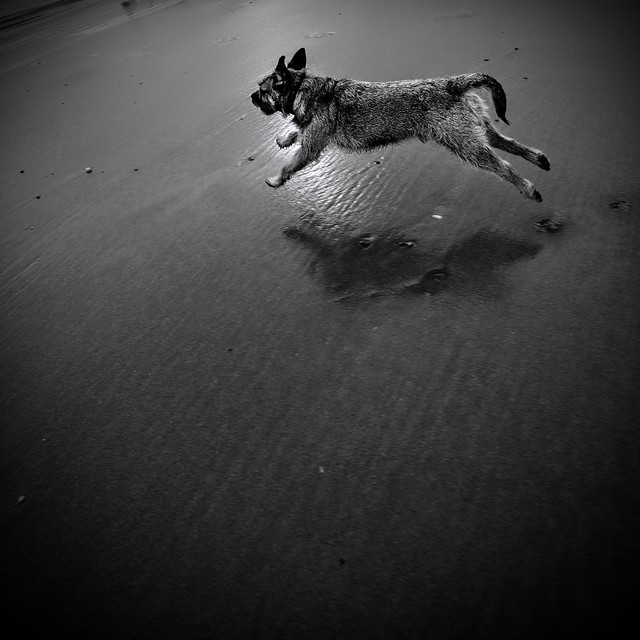 orangecapri - . . . runnin' BT