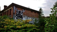 Hundelgemsesteenweg, 4 sep 2014