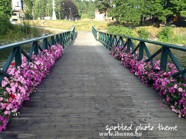 Spotted Photo Theme: My Bridge to Nature