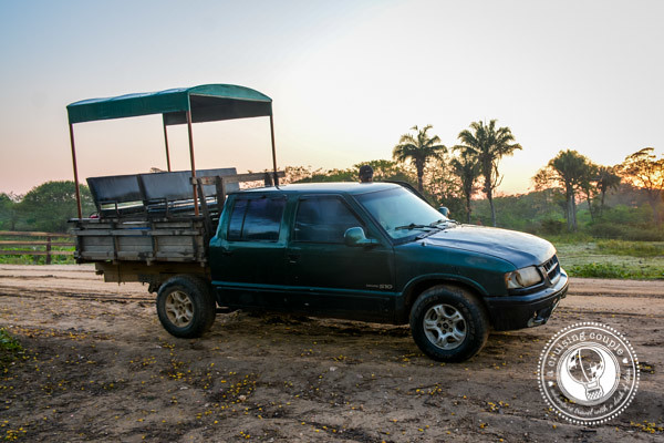 Jeep ride along the Transpantaneira Pantanal