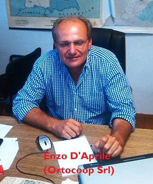 Noicattaro. Enzo D'Aprile (Ortocoop Srl)