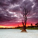 Dam! what a Sunset by Beth Wode Photography