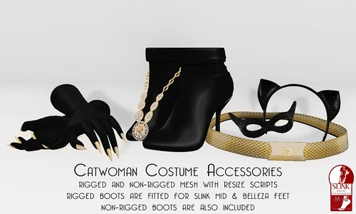 Catwoman Accessories