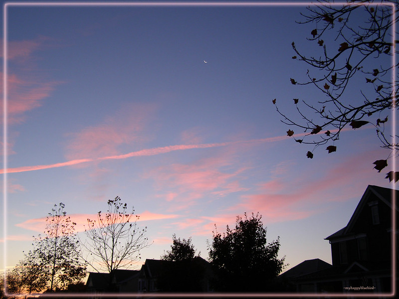 ~ crescent moon at dawn...