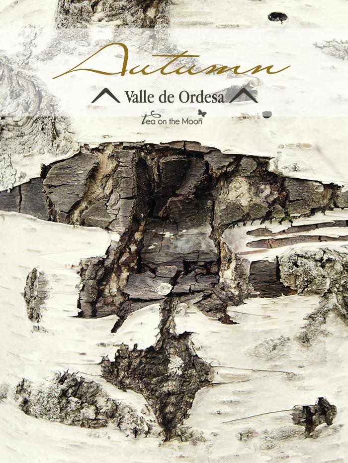 Valle de Ordesa, otoño