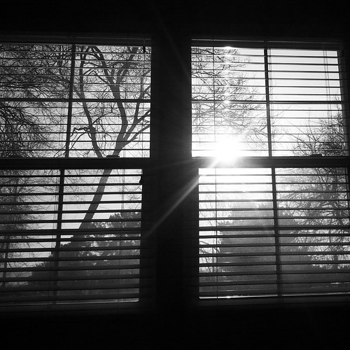 morning bw home window sunrise blinds cameraunknown year2012