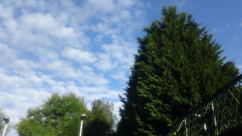 Blue sky: