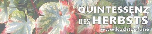Blog-Event CIII - Quintessenz des Herbsts (Einsendeschluss 25. November 2014)