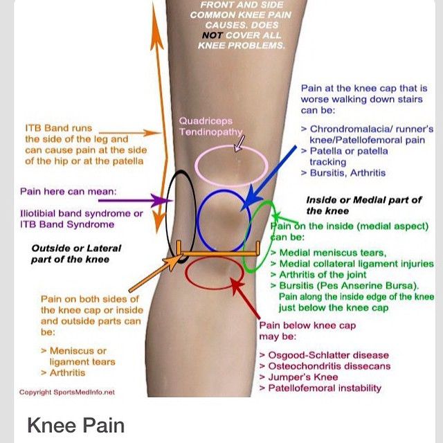 Knee Pain Did You Know That Your Knee Supports 6 Times Yo