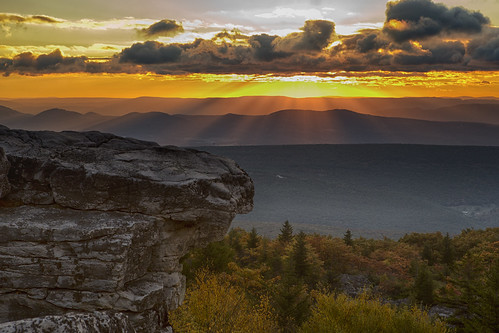 bear autumn west fall rock sunrise virginia dolly sods
