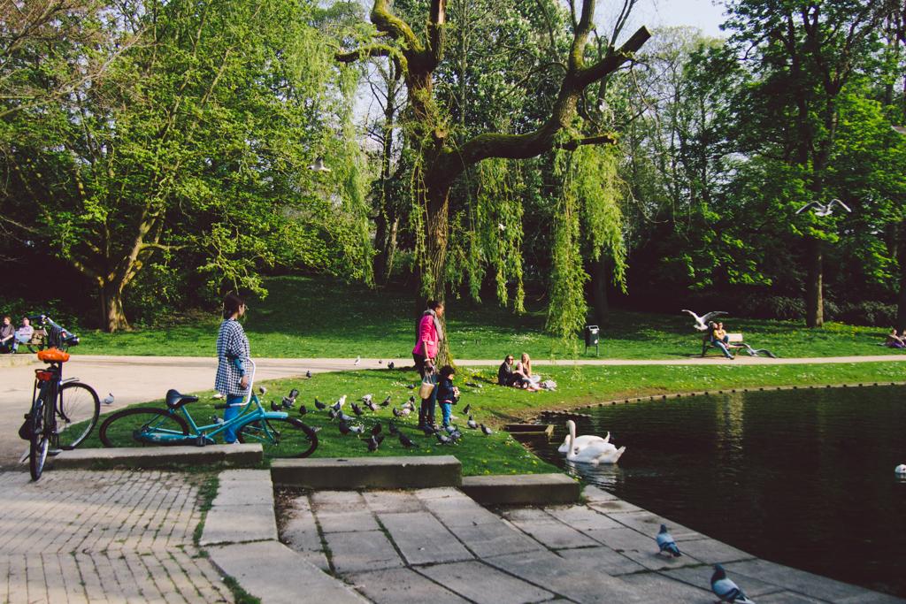 Untitled 格羅寧根 轆轆遊遊。荷蘭隱世單車小鎮 格羅寧根(下) 15482534906 a7ee9a4a90 b