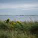 Field test: Nikon 58mm f/1.4G by re/discoverfilm