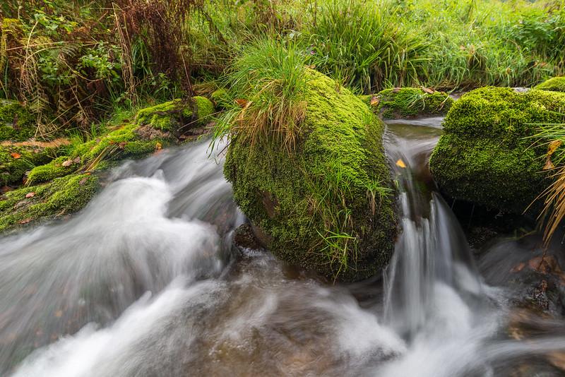 Wasser mit Stein D80_0190