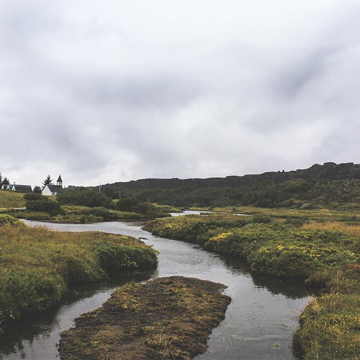 Iceland_Spiegeleule_August2014 107