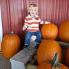 This kid loves pumpkins