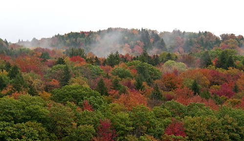 Lifting Vermont Fog
