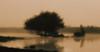 Dreamy lake scene