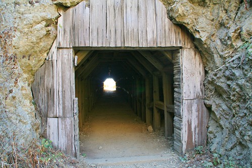 Wooden Tunnel to Partington Cove