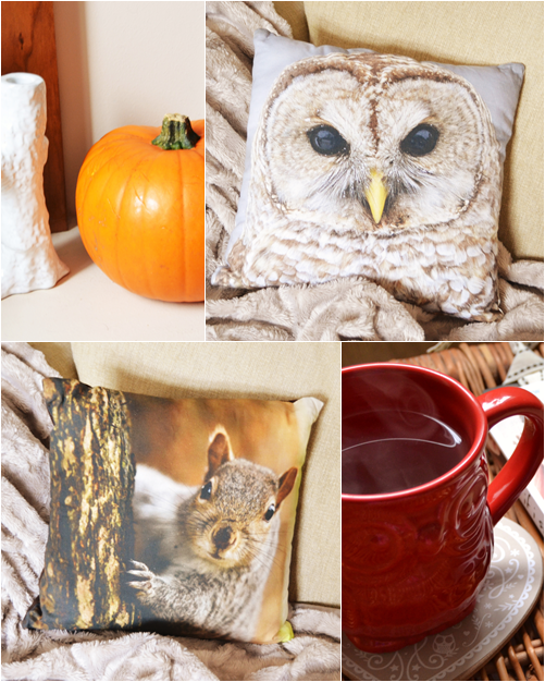 Asda_owl_Cushion