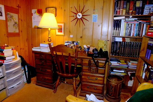 main study area