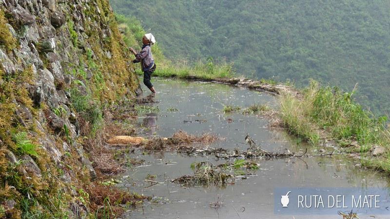Banaue Batad Filipinas (9)