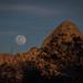 Joshua Tree National Park by EricRosenPhotography