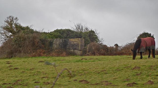 DSCN1375 Querqueville (Manche)