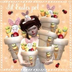 Lil easter Pot