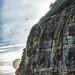 Cliff by Sock Merchant