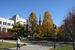 Fall @MarquetteU