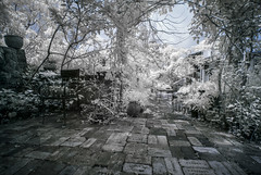 Garden Restaurant in IR
