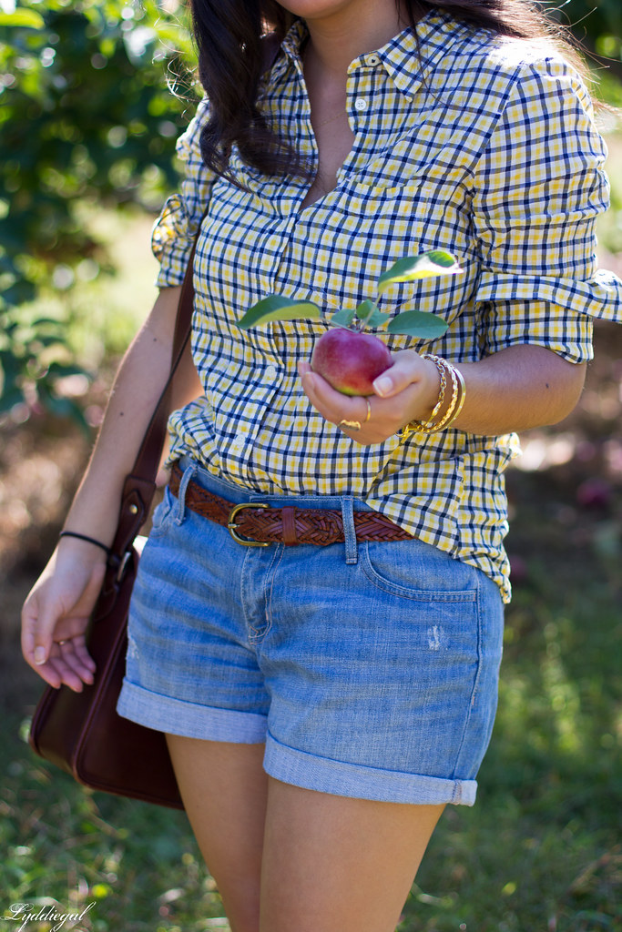 plaid shirt and denim shorts for apple picking-1.jpg
