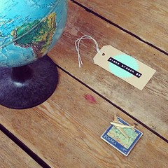 Plane brooch and globe