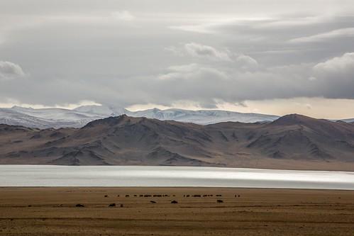mountain landscape flat empty mongolia olgii