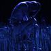 Pubblico il teatro di Casalecchio di Reno posted a photo: