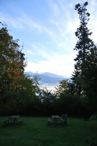 Autumn Overnighter - Morning in Fay Bainbridge Park