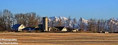 Palmer Ak Farm W_7793