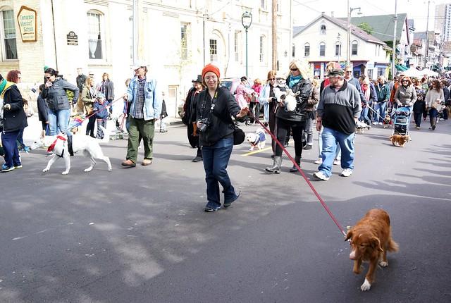 Brady Street Pet Parade 2014