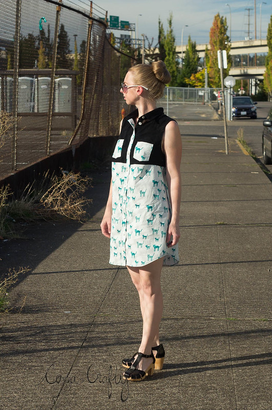 alder shirtdress1 (1 of 1)