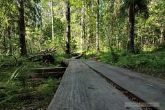 Lemmenlaakso Nature Park, FInland