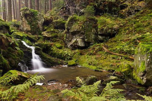 park wood longexposure autumn fall leaves forest wonderful river highlands natural valley czechrepublic podzim řeka vysočina českárepublika listí údolí doubrava dlouháexpozice přírodnírezervace