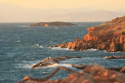 sunset sea sun seagulls nature birds landscape rocks waves wind birdwatching vouliagmeni