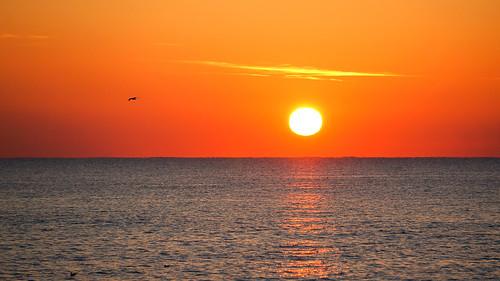 antoniotajuelo 西班牙遊記 日出巴塞羅內塔海灘