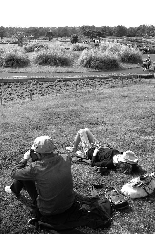 Day 5: Chilling Sunday, Ibaraki, 2014