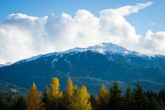 Fresh snow on top of Whistler