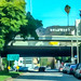 Small photo of Hollywood