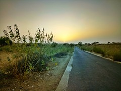 The Desert #sunset #thar